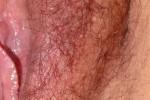 Free porn pics of Labia majora and minora 1 of 1 pics